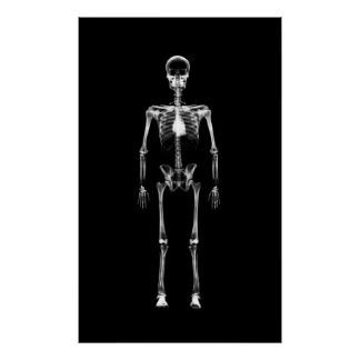 Poster - X-Ray Vision Single Skeleton Black White
