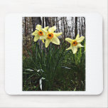 Posterised Daffodils Mousemat