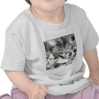 Postman Butterfly Shirt