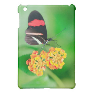 Postman rosina butterfly collecting nectar from case for the iPad mini