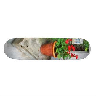 Pot of Geraniums on Stoop Custom Skateboard
