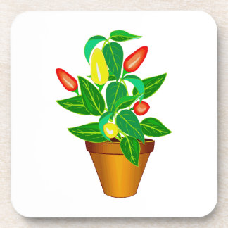 Pot with red and yellow pepper plant coasters
