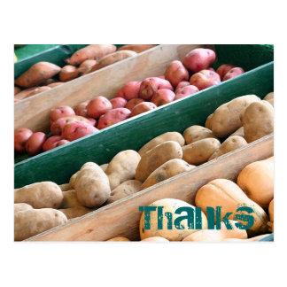 Potato Buds postcard
