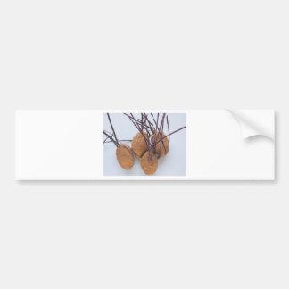 Potato plant sprout bumper sticker