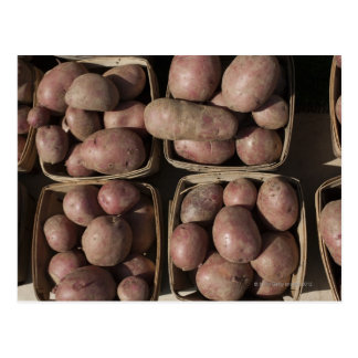 Potatoes at a New Jersey farmer's market Postcard