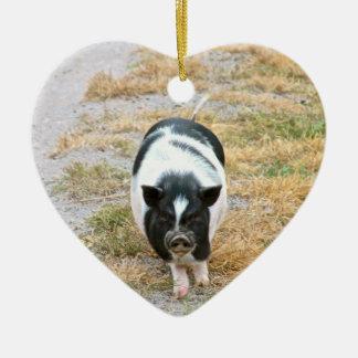 Potbelly Pig | Cute Farm Animal Photo Christmas Ornament