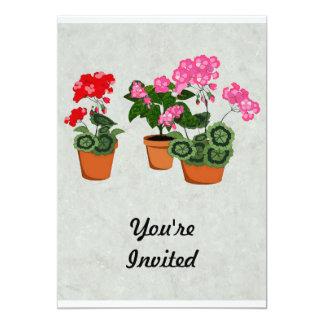 Pots of Geraniums 13 Cm X 18 Cm Invitation Card