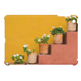 Potted flowers on staircase iPad mini cases