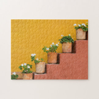 Potted flowers on staircase jigsaw puzzle