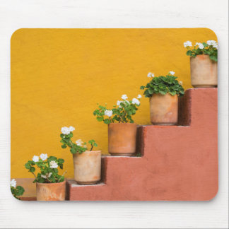 Potted flowers on staircase mouse mat