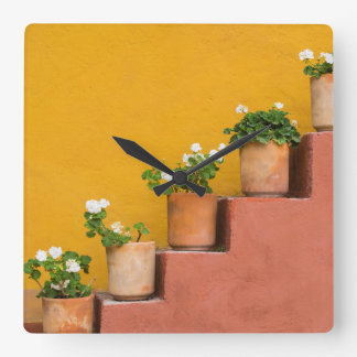 Potted flowers on staircase square wall clock