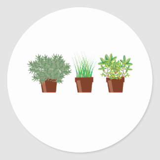 Potted Herbs Classic Round Sticker