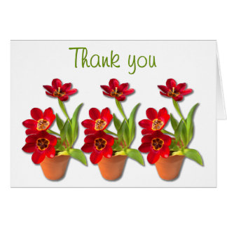 Potted Mature Red Tulips Photograph Card