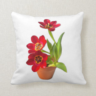 Potted Mature Red Tulips Photograph Cushion
