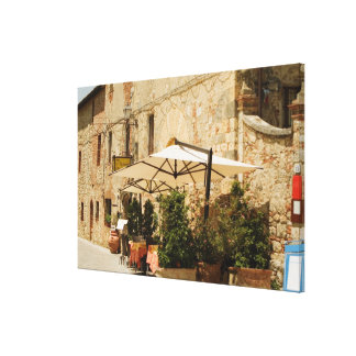 Potted plants and patio umbrellas in front of a gallery wrap canvas