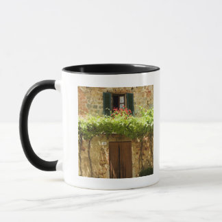 Potted plants in front of a building, Piazza Mug