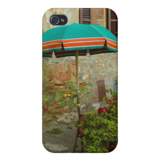 Potted plants in lawn, San Gimignano, Siena iPhone 4 Cases