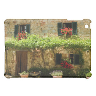 Potted plants outside a house, Piazza Roma, iPad Mini Cover