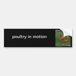 poultry in motion bumper stickers