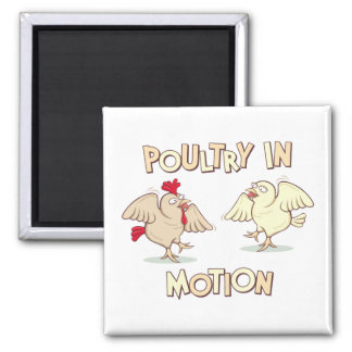 Poultry in Motion Magnet