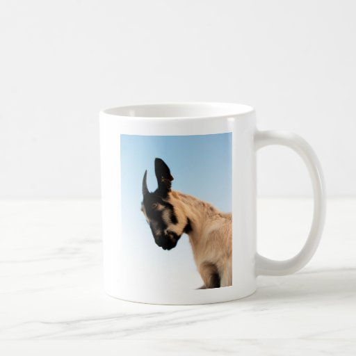 Pounce Mug