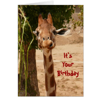 Pour Yourself A Tall One Greeting Card