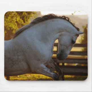 Power Of An Andalusian Mare Mouse Mat