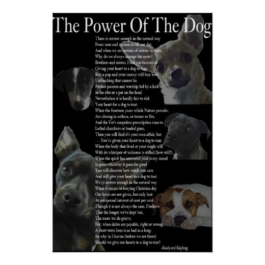 Power of the Dog Poster (large)