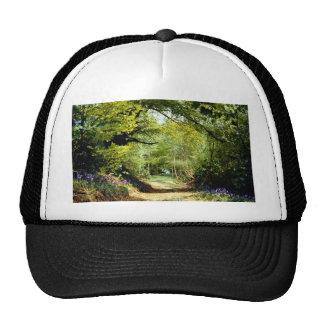 Powerhill Woodlands Battle, East Sussex, England E Hat