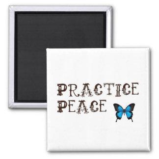 Practice Peace Magnet