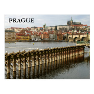 Prague – Castle II Postcard