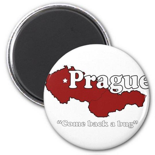 Prague: Come Back a Bug Magnet