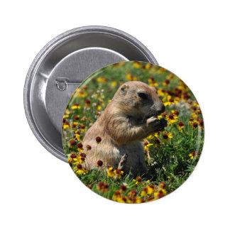 Praire Dog 6 Cm Round Badge