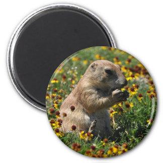 Praire Dog 6 Cm Round Magnet