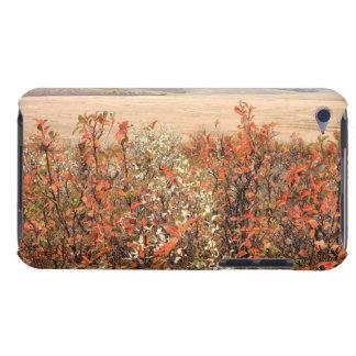 Prairie Buckbrush iPod Touch Case-Mate Case