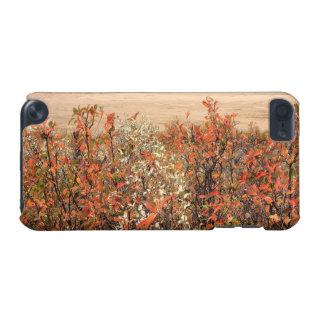 Prairie Buckbrush iPod Touch (5th Generation) Cases