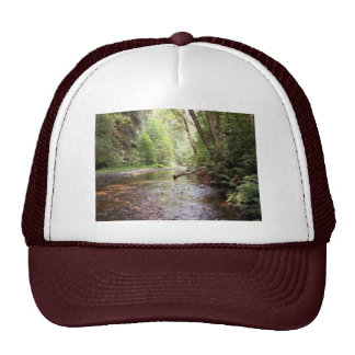 Prairie Creek Redwoods Hat