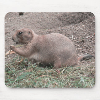 Prairie Dog 01 Mouse Pads