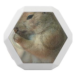 prairie-dog-17.jpg white boombot rex bluetooth speaker