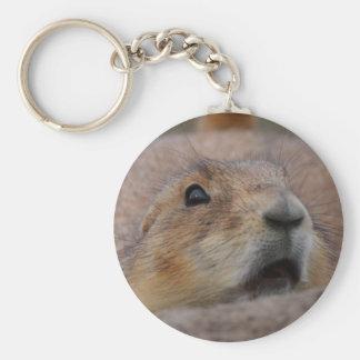 prairie dog basic round button key ring