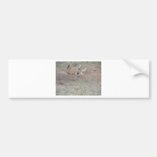 Prairie Dog Couple Car Bumper Sticker