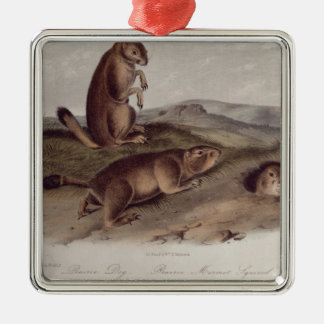 Prairie Dog from 'Quadrupeds of North America' Christmas Ornament