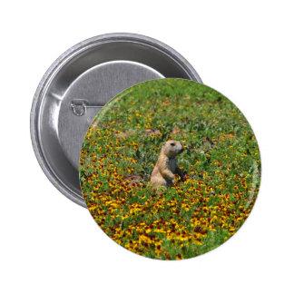 Prairie Dog in Flowers 6 Cm Round Badge