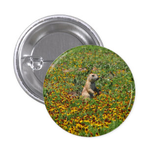 Prairie Dog in Flowers Pinback Buttons