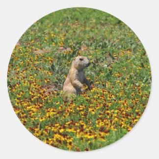 Prairie Dog in Flowers Round Sticker
