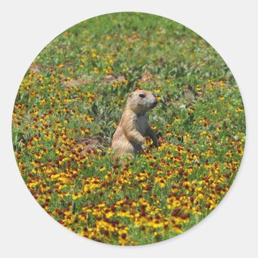 Prairie Dog in Flowers Sticker