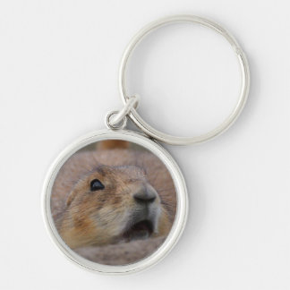 prairie dog Silver-Colored round key ring