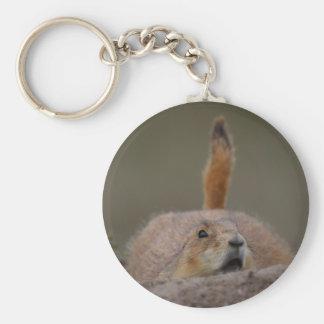 prairie dog key chains