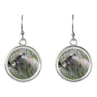 Prairie Dog Lunch Break Earrings