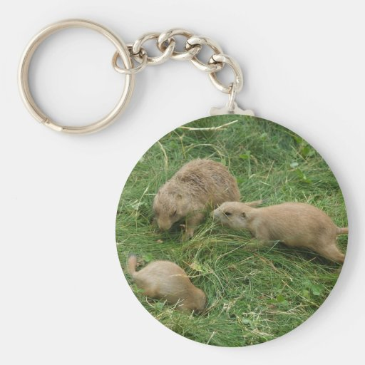 Prairie Dog Mother Rounding Up The Kids At Zoo Ame Keychain
